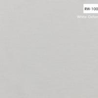 RW-1001 copy